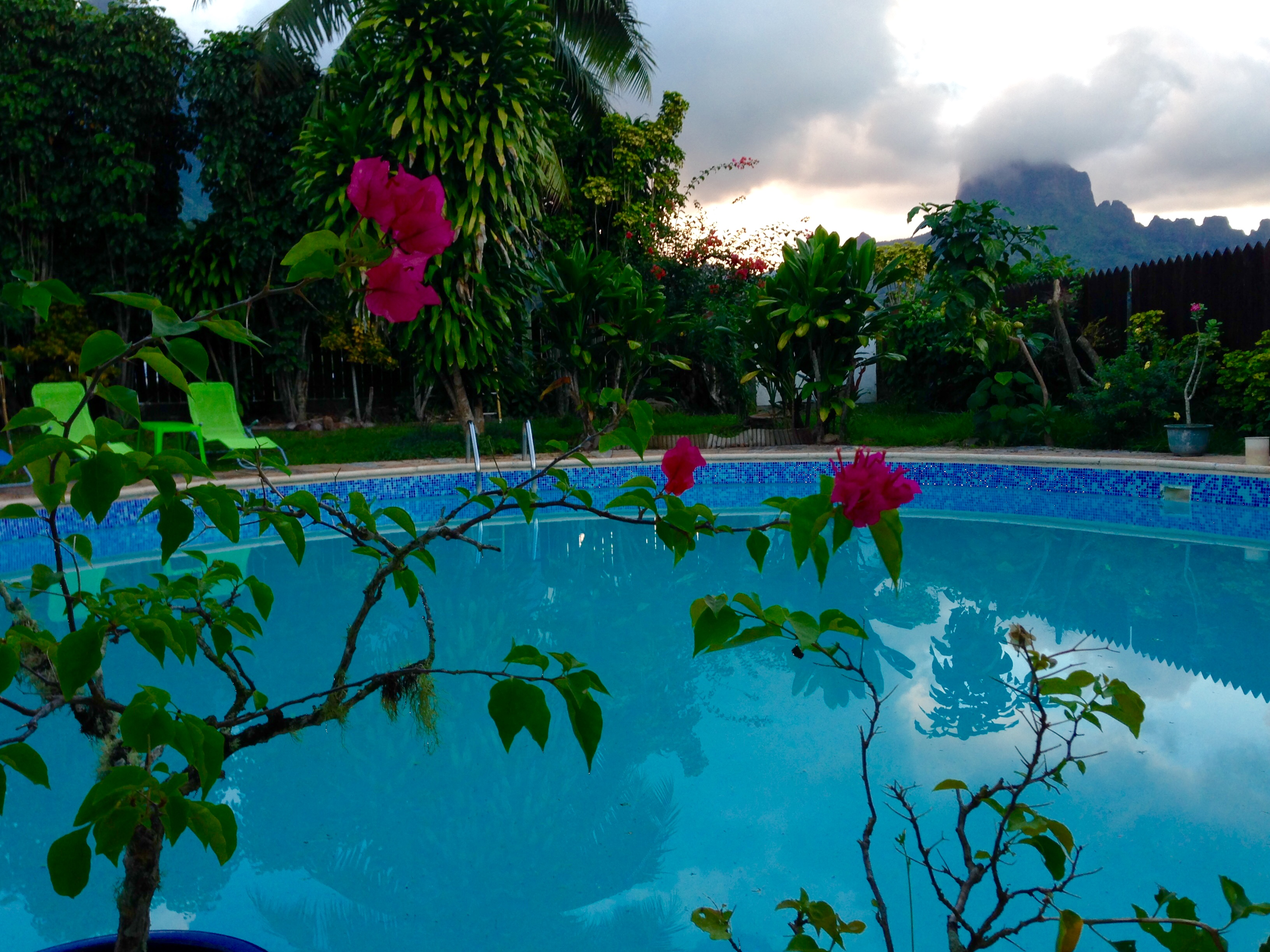 Garden, views, and swimming pool