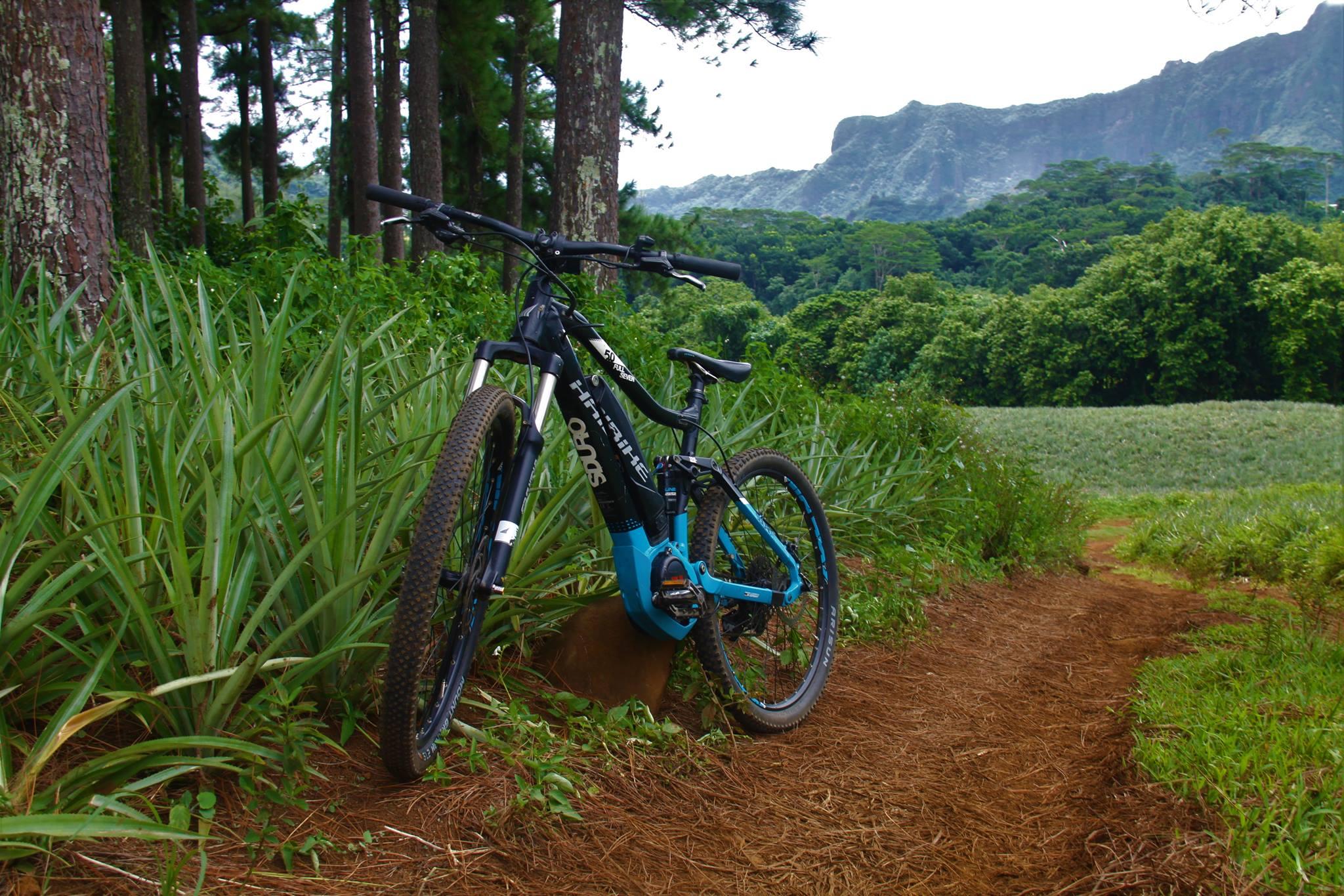 Moorea Electik Bike: To explore the inlands